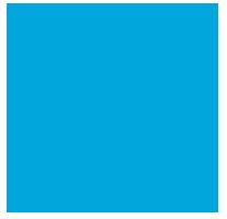 Hire Lions logo