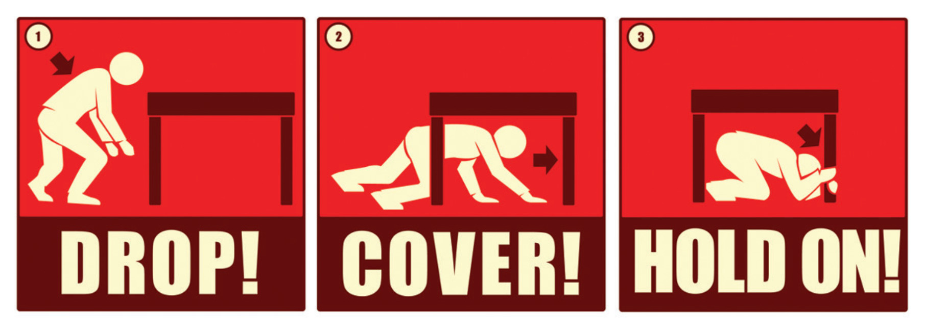 ShakeOut Drop Cover Hold