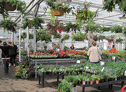 LWTech Environmental Horticulture holds its annual Spring Plan Sale in the month of April