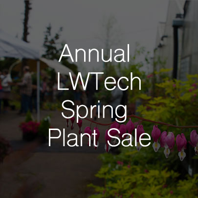 Annual Lake Washington Institute of Technology Spring Plant Sale Starts April 27
